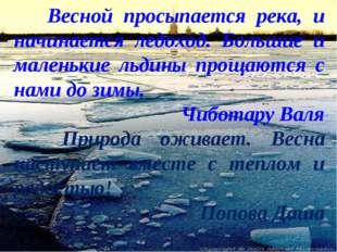 Весной просыпается река, и начинается ледоход. Большие и маленькие льдины пр