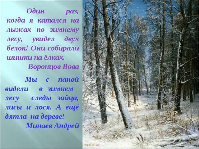 Один раз, когда я катался на лыжах по зимнему лесу, увидел двух белок! Они с...