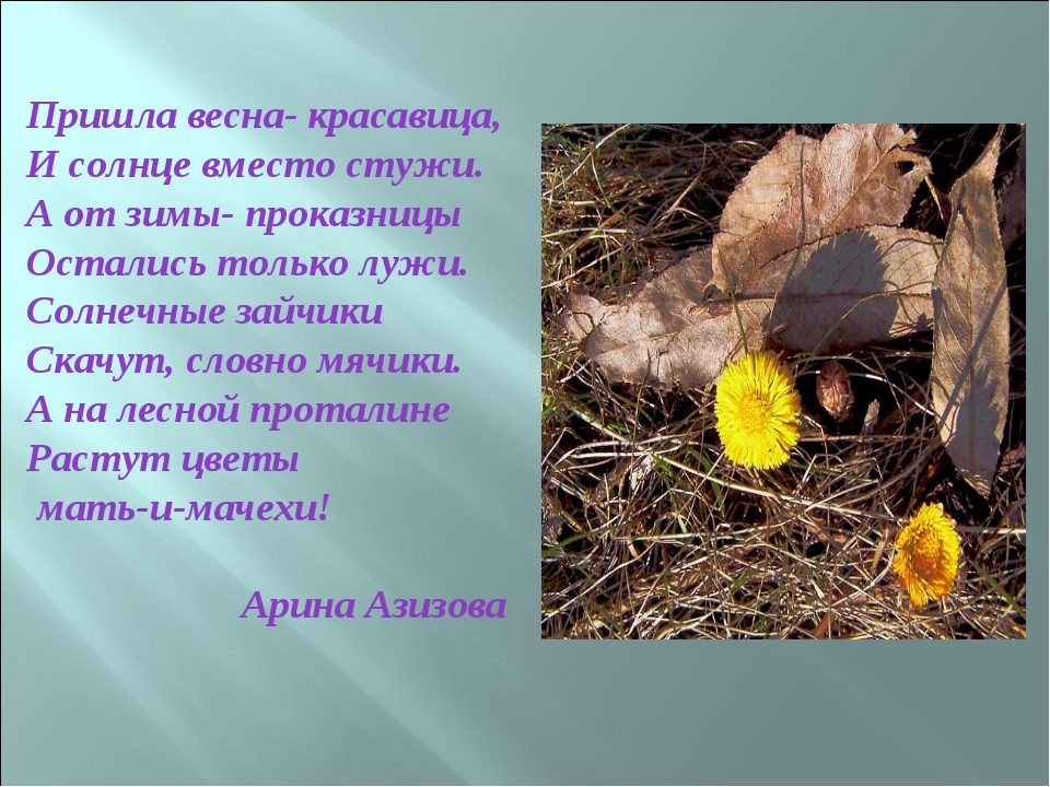 Пришла весна- красавица, И солнце вместо стужи. А от зимы- проказницы Осталис...