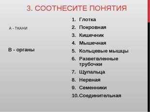 3. СООТНЕСИТЕ ПОНЯТИЯ А - ТКАНИ В - органы Глотка Покровная Кишечник Мышечная