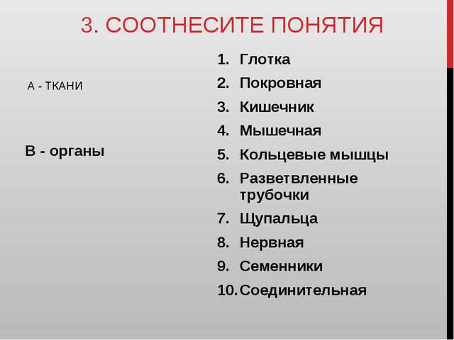 3. СООТНЕСИТЕ ПОНЯТИЯ А - ТКАНИ В - органы Глотка Покровная Кишечник Мышечная...