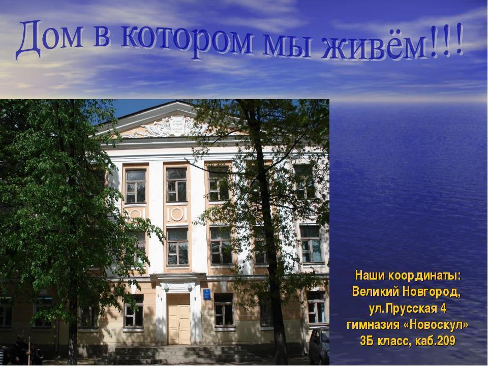 Наши координаты: Великий Новгород, ул.Прусская 4 гимназия «Новоскул» 3Б класс...