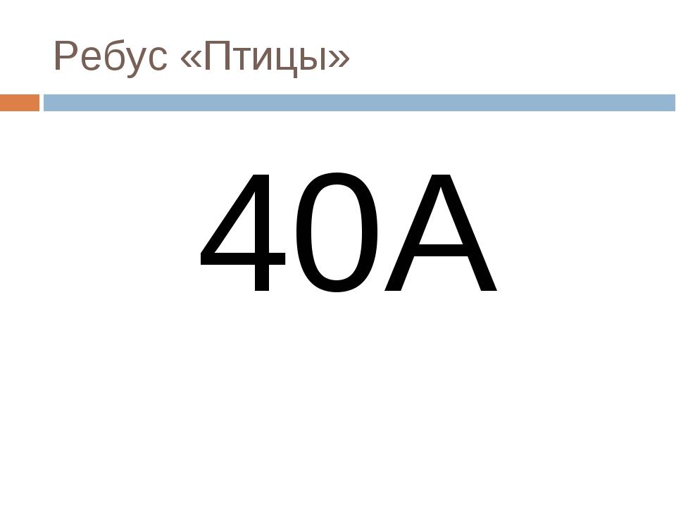 Ребус «Птицы» 40А