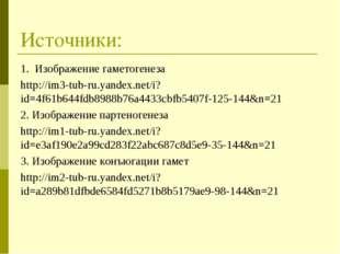Источники: 1. Изображение гаметогенеза http://im3-tub-ru.yandex.net/i?id=4f61