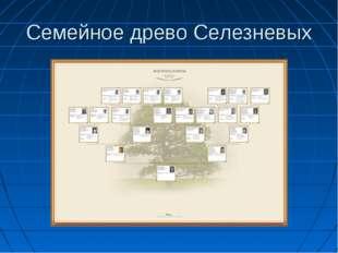 Семейное древо Селезневых