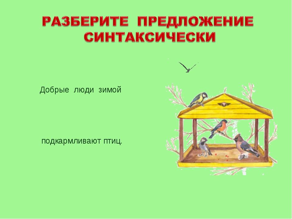 подкармливают птиц. Добрые люди зимой