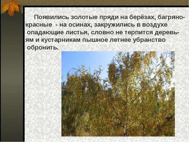 Появились золотые пряди на берёзах, багряно- красные - на осинах, закружилис...