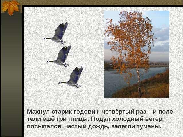 Махнул старик-годовик четвёртый раз – и поле- тели ещё три птицы. Подул холод...