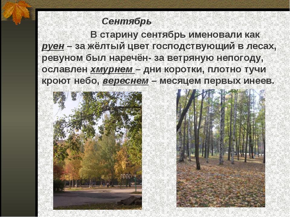 Сентябрь В старину сентябрь именовали как руен – за жёлтый цвет господствующи...