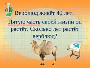 Верблюд живёт 40 лет. Пятую часть своей жизни он растёт. Сколько лет растёт в