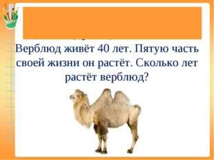 Задачи на нахождение доли (дроби) от числа Верблюд живёт 40 лет. Пятую часть