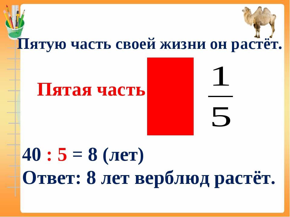 Пятая часть – это Пятую часть своей жизни он растёт. 40 : 5 = 8 (лет) Ответ:...