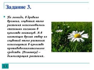 Задание 3. По легенде, в древние времена, соцветия этого растения использовал