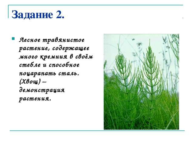 Задание 2. Лесное травянистое растение, содержащее много кремния в своём стеб...