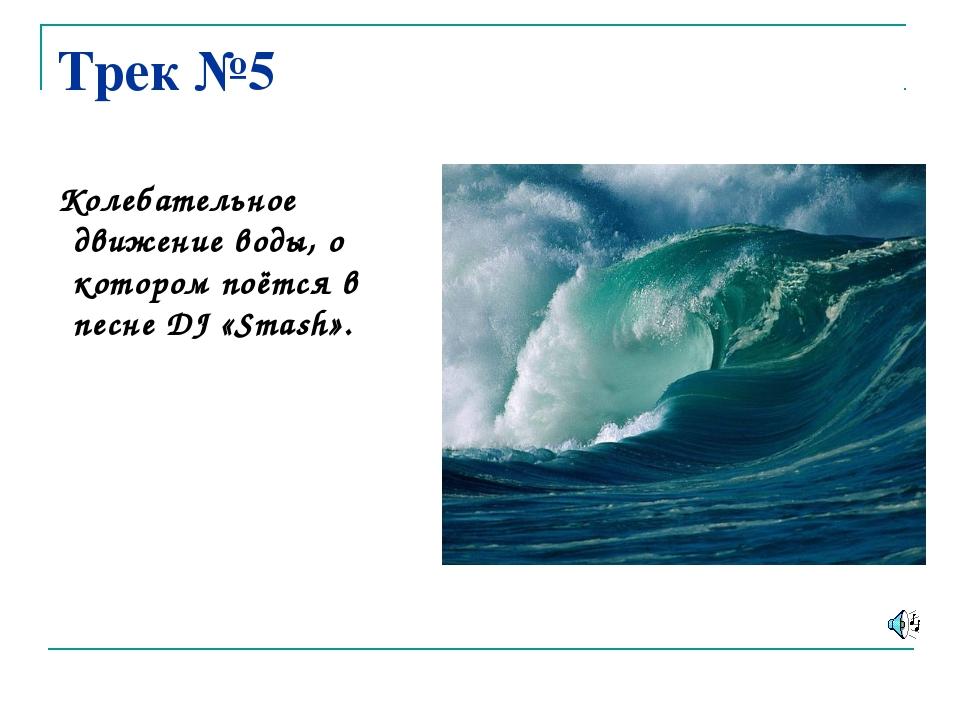 Трек №5 Колебательное движение воды, о котором поётся в песне DJ «Smash».