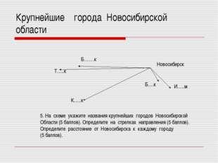 Крупнейшие города Новосибирской области Новосибирск И…..м Б….к К…..к Т…..к Б…