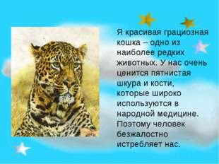 Я красивая грациозная кошка – одно из наиболее редких животных. У нас очень ц