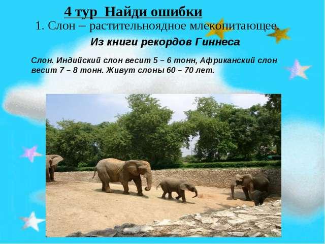 1. Слон – растительноядное млекопитающее. Из книги рекордов Гиннеса Слон. Ин...
