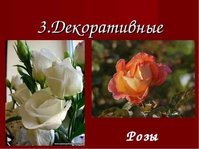 3.Декоративные Розы