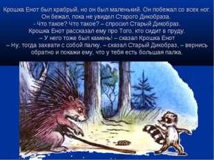 Крошка Енот был храбрый, но он был маленький. Он побежал со всех ног. Он бежа