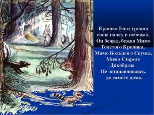 Крошка Енот уронил свою палку и побежал. Он бежал, бежал Мимо Толстого Кролик