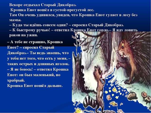 Вскоре отдыхал Старый Дикобраз. Крошка Енот вошёл в густой-прегустой лес. Там...