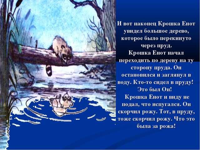 И вот наконец Крошка Енот увидел большое дерево, которое было перекинуто чере...