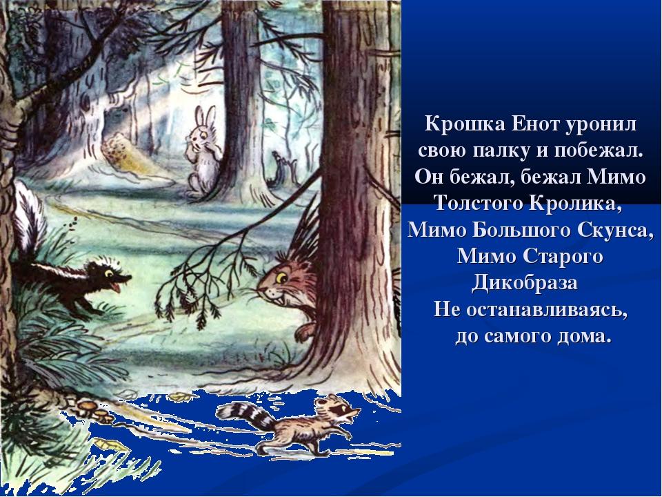 Крошка Енот уронил свою палку и побежал. Он бежал, бежал Мимо Толстого Кролик...