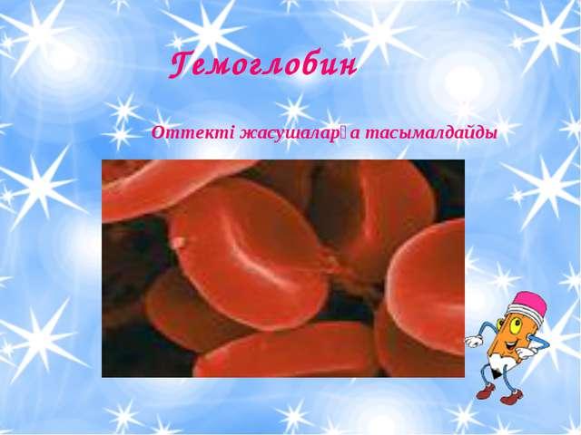Гемоглобин Оттекті жасушаларға тасымалдайды