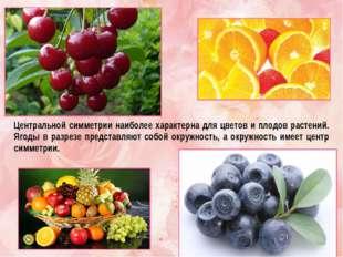 Центральной симметрии наиболее характерна для цветов и плодов растений. Ягоды