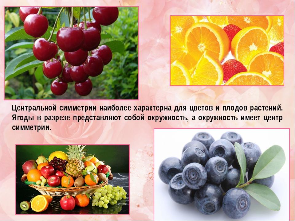 Центральной симметрии наиболее характерна для цветов и плодов растений. Ягоды...