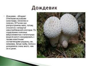 Дождевик - обладает отличными вкусовыми качествами, питателен и полезен. В Ро