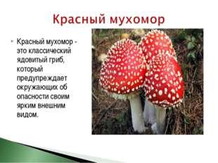 Красный мухомор - это классический ядовитый гриб, который предупреждает окруж