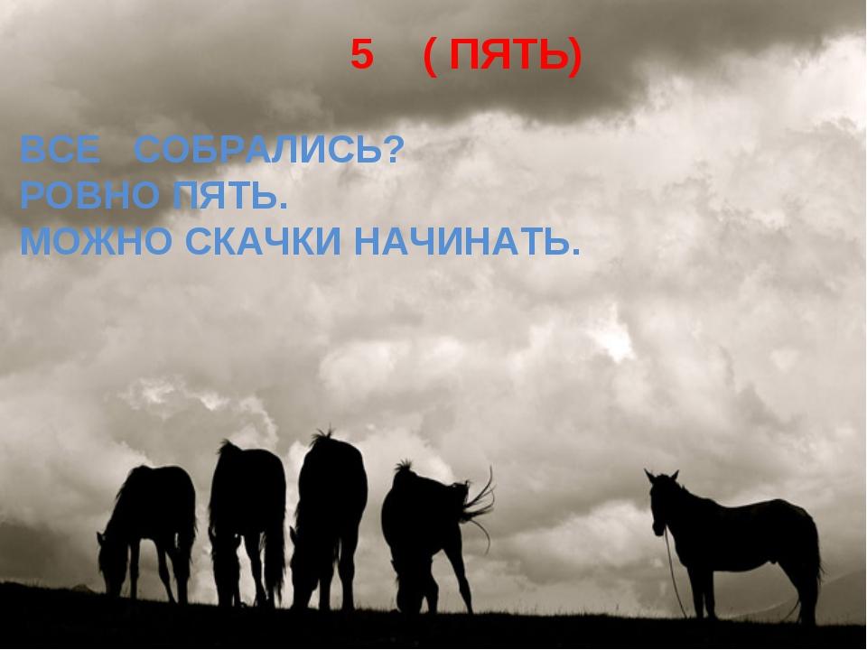 5 ( ПЯТЬ) ВСЕ СОБРАЛИСЬ? РОВНО ПЯТЬ. МОЖНО СКАЧКИ НАЧИНАТЬ.
