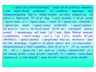 Қарлығаш (Hirrundinidae) – торғай тәрізділер отряды, әнші торғайлар тобының