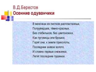 В.Д.Берестов Осенние одуванчики В веночках из листков распластанных, Полуувяд