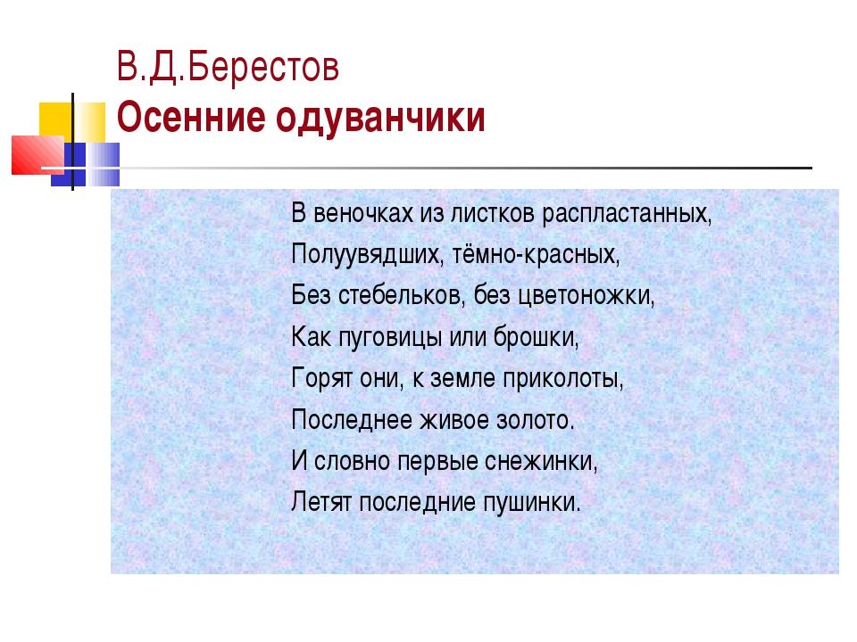 В.Д.Берестов Осенние одуванчики В веночках из листков распластанных, Полуувяд...