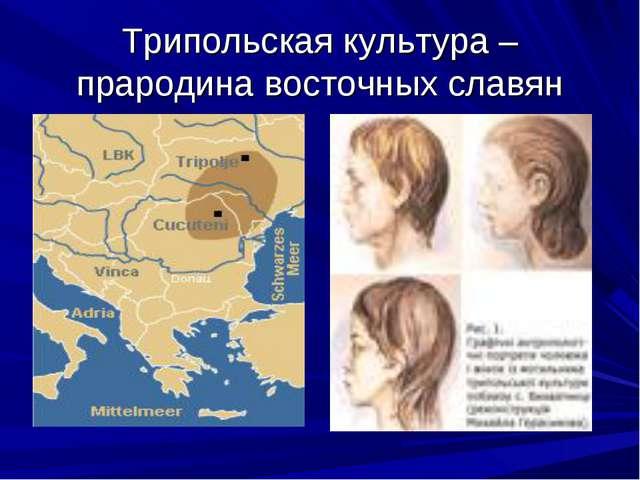 Трипольская культура – прародина восточных славян