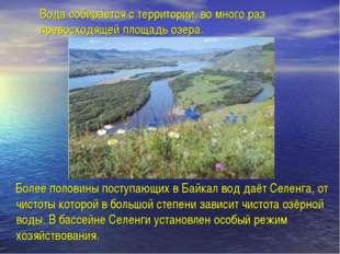 Вода собирается с территории, во много раз превосходящей площадь озера. Более