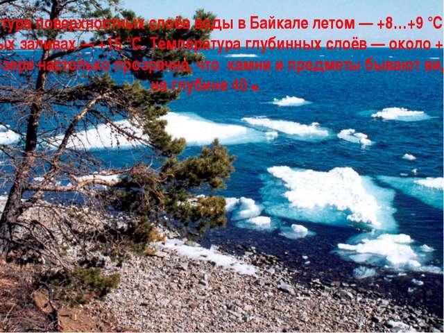 Температура поверхностных слоёв воды в Байкале летом — +8…+9 °С, а в отдельны...