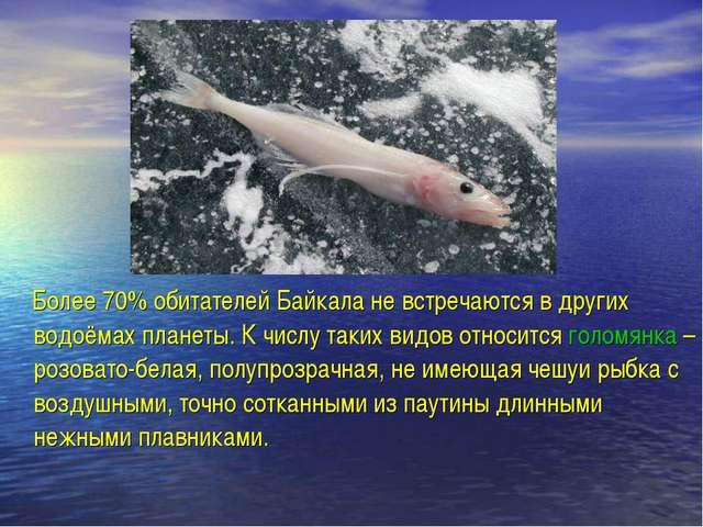 Более 70% обитателей Байкала не встречаются в других водоёмах планеты. К чис...