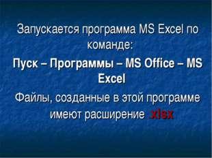 Запускается программа MS Excel по команде: Пуск – Программы – MS Office – MS