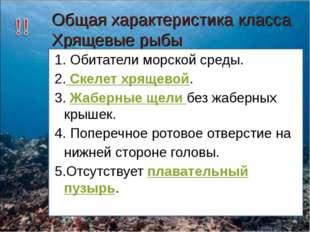 Общая характеристика класса Хрящевые рыбы 1. Обитатели морской среды. 2. Скел