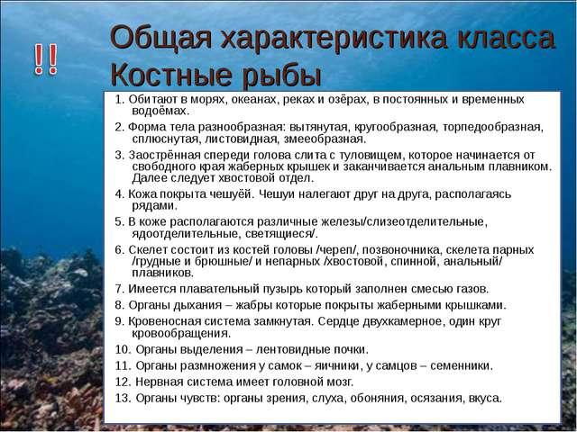 Общая характеристика класса Костные рыбы 1. Обитают в морях, океанах, реках и...