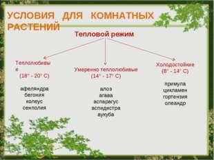 УСЛОВИЯ ДЛЯ КОМНАТНЫХ РАСТЕНИЙ Тепловой режим Теплолюбивые (18° - 20° С) афел