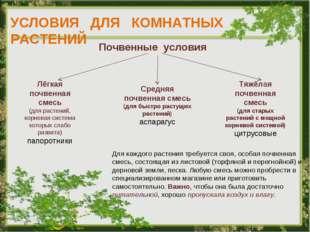 УСЛОВИЯ ДЛЯ КОМНАТНЫХ РАСТЕНИЙ Почвенные условия Лёгкая почвенная смесь (для