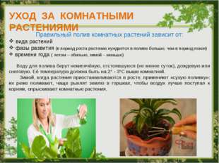 УХОД ЗА КОМНАТНЫМИ РАСТЕНИЯМИ Правильный полив комнатных растений зависит от:
