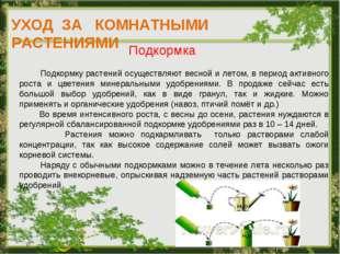 УХОД ЗА КОМНАТНЫМИ РАСТЕНИЯМИ Подкормка Подкормку растений осуществляют весно