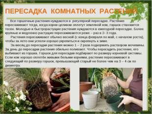 ПЕРЕСАДКА КОМНАТНЫХ РАСТЕНИЙ Все горшечные растения нуждаются в регулярной пе