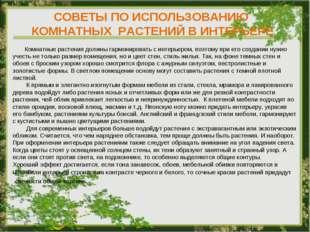 СОВЕТЫ ПО ИСПОЛЬЗОВАНИЮ КОМНАТНЫХ РАСТЕНИЙ В ИНТЕРЬЕРЕ Комнатные растения дол
